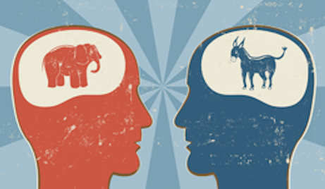 brain differences liberals conservatives